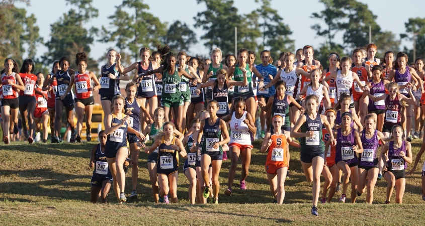 Impressive Performance in Cross Country
